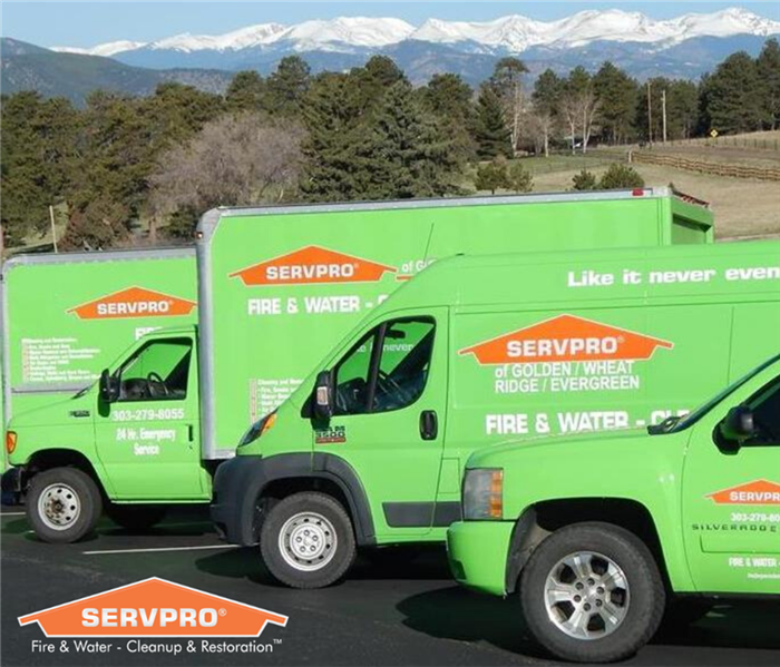 SERVPRO vehicles lined up