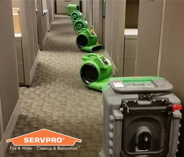 SERVPRO equipment lined up in the middle of an office.