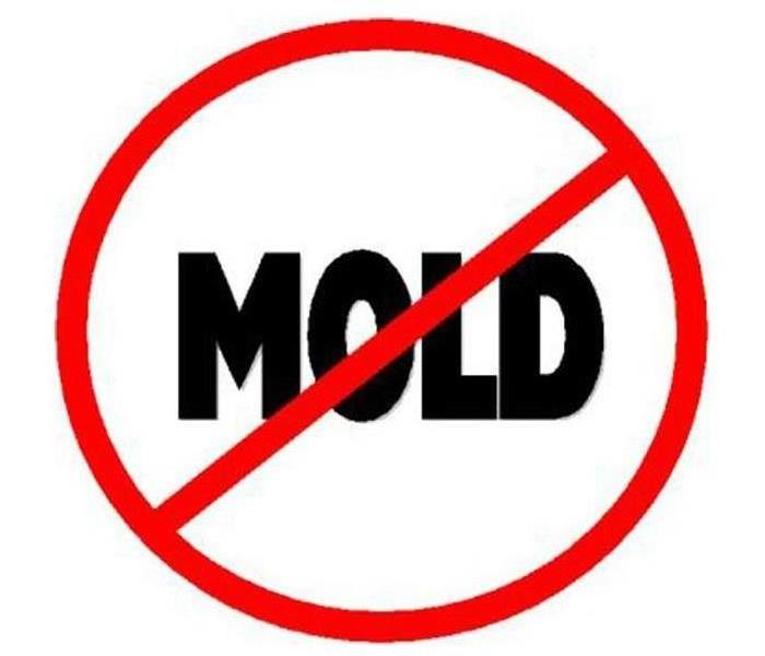 Mold Remediation Mold Mitigation Services in Parchment, Michigan