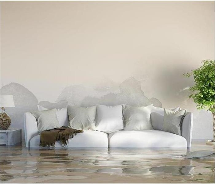 Water Damage 24 Hour Emergency Water Damage Service in Vicksburg, Michigan